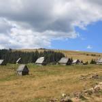 Muntele Mare Old Shepherds house in Apuseni Mountains
